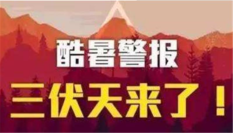 三伏已入,yuanninan然du夏——沙bati育app高 效shu控zhe弯机械